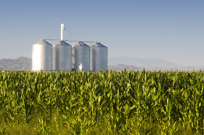 Ranching and agriculture are Arizona's second largest source of revenue contributing $10.3 billion to the state's economy (source: arizonaexperience.org).