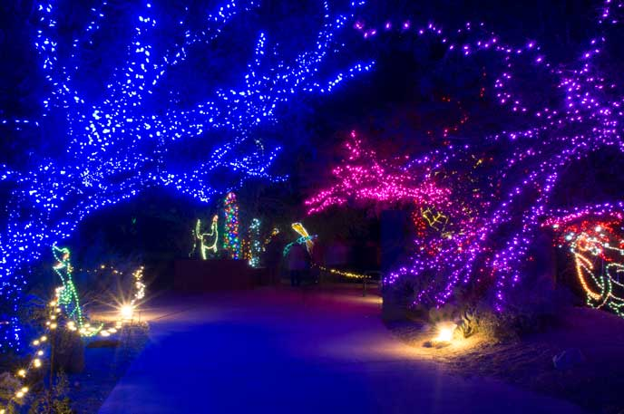 Gaze at over three million twinkling lights in 600 sculptures at the 23rd Annual Phoenix Zoo Lights January 1 – 10.