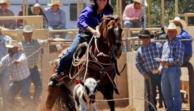 Cowgirl cattle roping at the rodeo